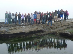 group at tide pool